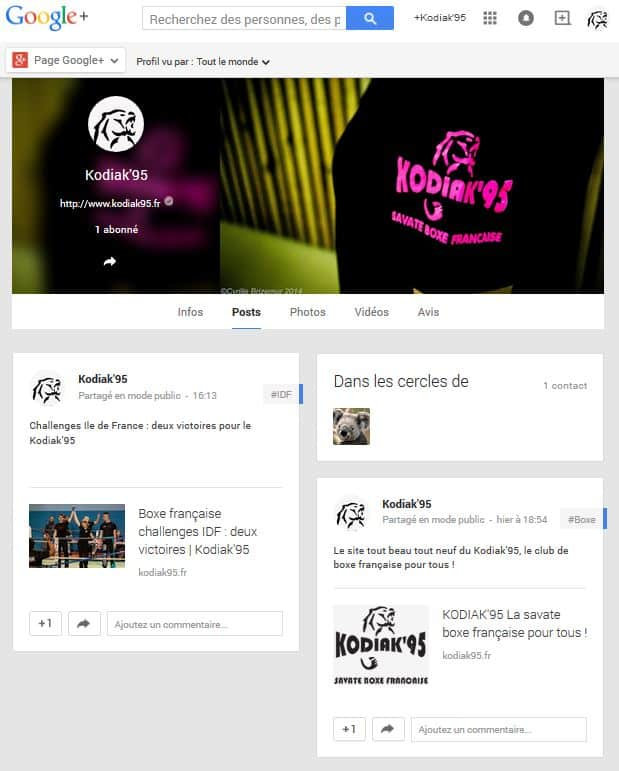 Kodiak'95, le club de boxe française pour tous, est sur Google+