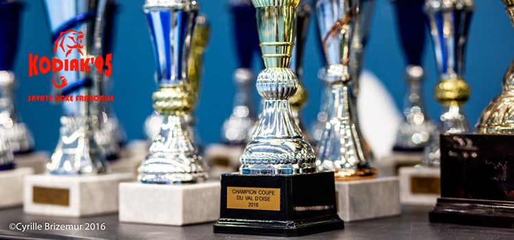 Une coupe 2016 du Val d'Oise de boxe française de tous les records
